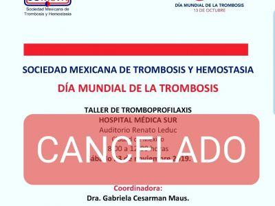 Taller de Tromboprofilaxis - Hospital Médica Sur (Cancelado)