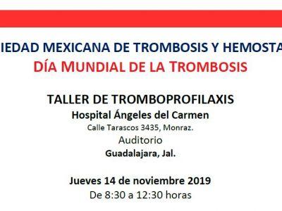Taller de Tromboprofilaxis - Hospital Ángeles del Carmen
